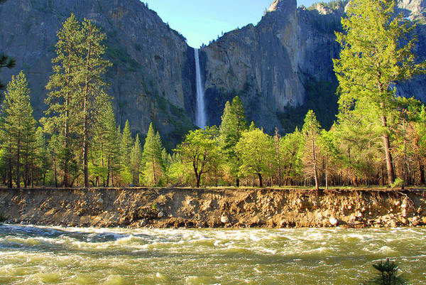 Photograph - Bridalveil Fall And The Merced by Lynn Bauer