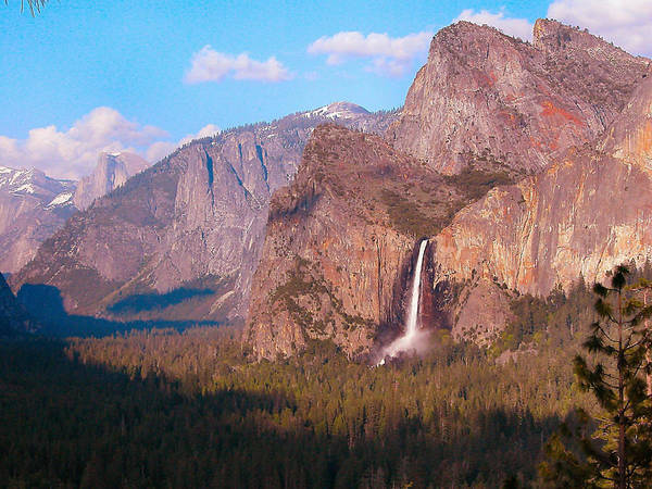 Photograph - Bridalveil Falls In Yosemite by Lynn Bauer