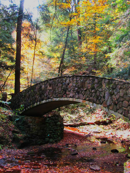Hocking Hills Photograph - Bridge Over Troubled Waters by Vijay Sharon Govender
