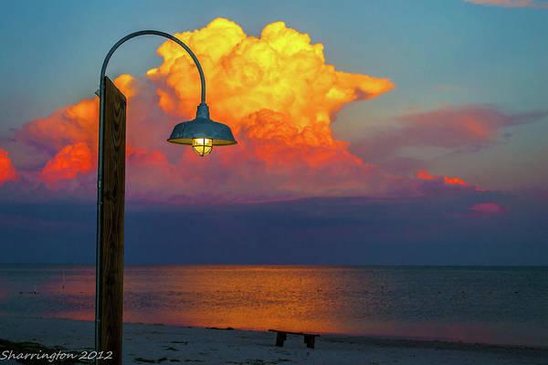 Cedar Key Photograph - Brilliant by Shannon Harrington