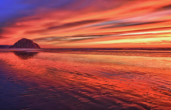 Photograph - Brilliant Sunset by Beth Sargent