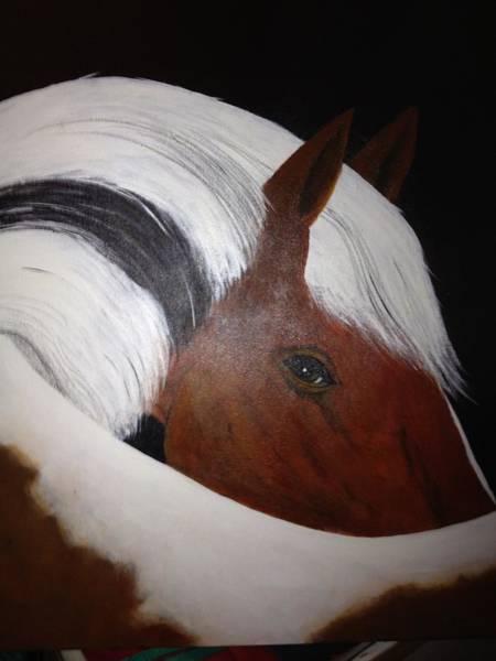 Benny Painting - Brn-blk Horse by Benny Davis