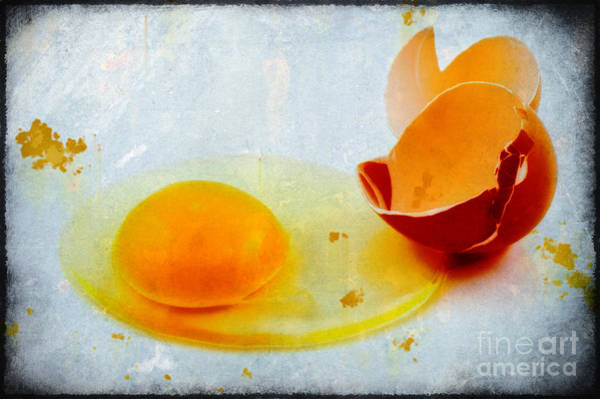 Photograph - Broken Egg by Silvia Ganora