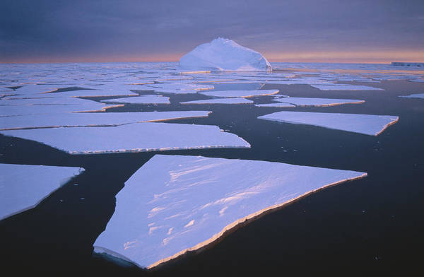 Photograph - Broken Fast Ice, Under Impending by Tui De Roy