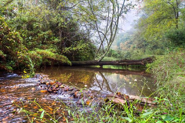 Photograph - Brook Reflections by Debra and Dave Vanderlaan