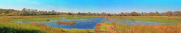 Photograph - Brookgreen Gardens Ricefields by Bill Barber