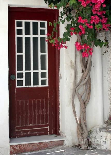 Photograph - Brown Door In Greece by Sabrina L Ryan