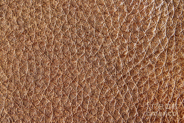 Cowhide Wall Art - Photograph - Brown Leather Grain by Blink Images