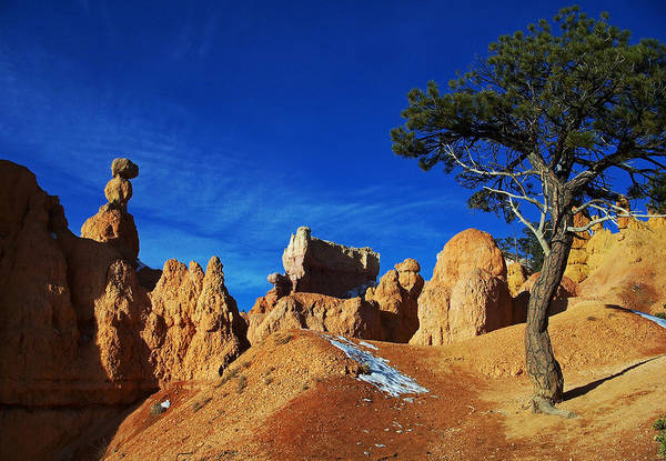 Photograph - Bryce Canyon 2 by Sheila Kay McIntyre