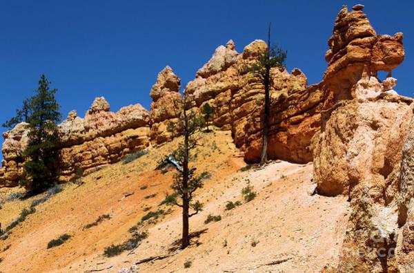 Photograph - Bryce Canyon Dragon by Adam Jewell