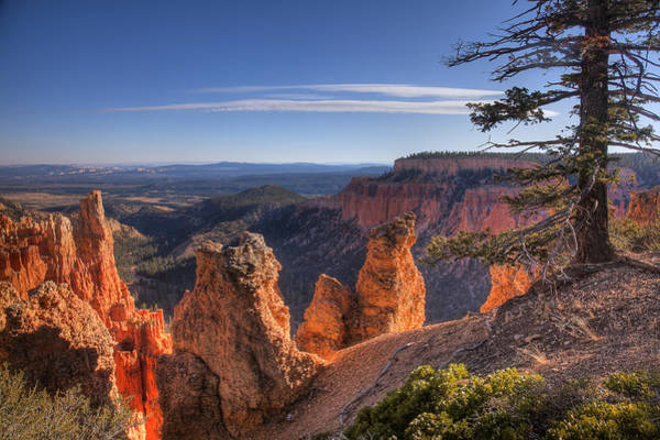 Photograph - Bryce Sunrise by Andy Bitterer