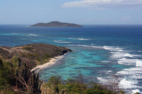 Photograph - Buck Island Usvi by Kelly Holm