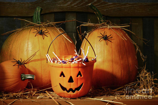 Wall Art - Photograph - Bucket Filled With Halloween Candy by Sandra Cunningham