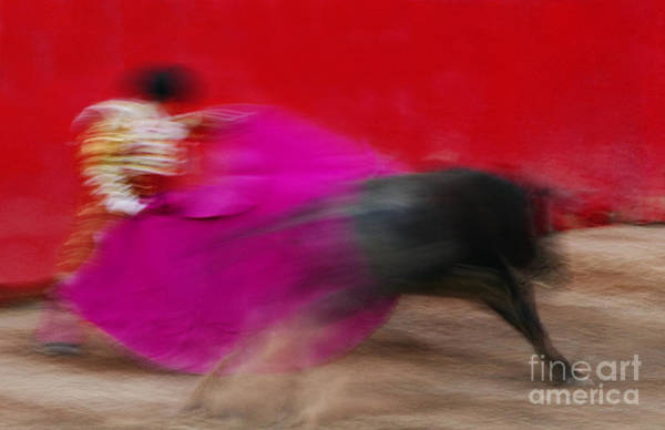 Toreador Photograph - Bull Fighter - Mexico by Craig Lovell