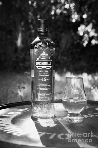 Irish Whiskey Photograph - Bushmills Irish Single Malt 16 Year Old Whiskey County Antrim Northern Ireland by Joe Fox
