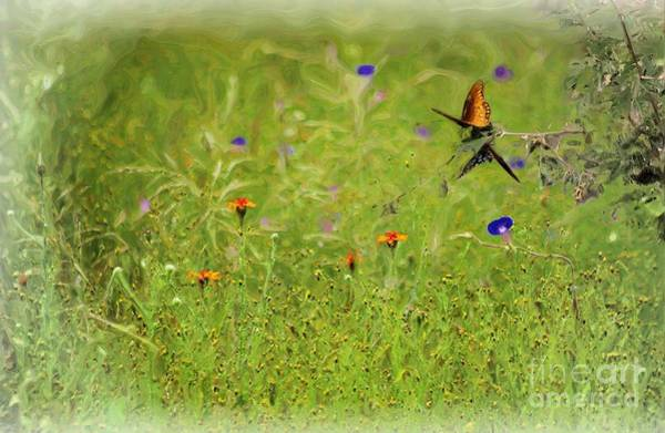 Painting - Butterflies Making Love In The Meadow by John  Kolenberg