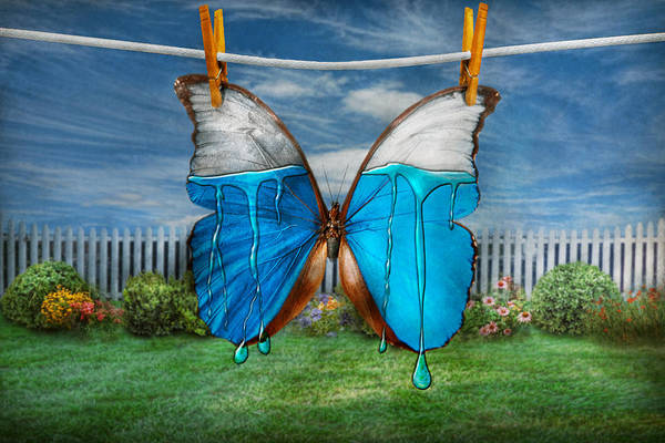 Photograph - Butterfly - Morpho - I Hate It When The Colors Run by Mike Savad