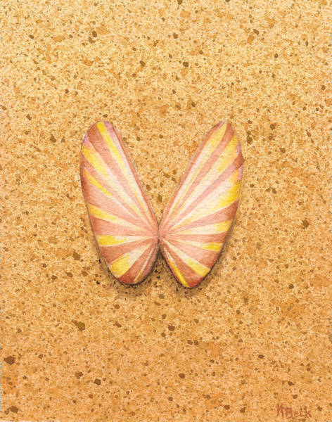 Wall Art - Painting - Butterfly Sea Shell by Katherine Young-Beck