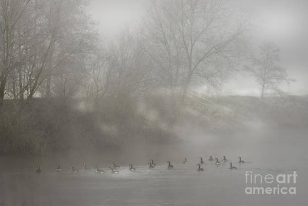 Wall Art - Photograph - By The River Wye by Angel Ciesniarska