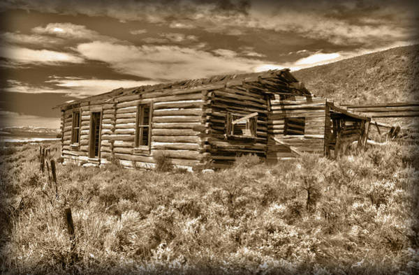 Photograph - Cabin Fever by Shane Bechler