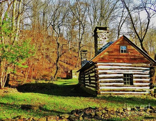Cabin In The Woods Art Print by Snapshot Studio