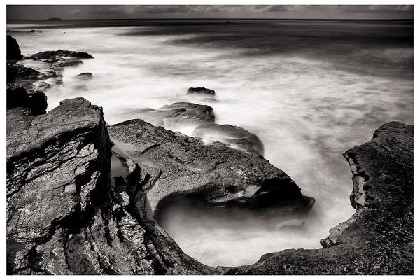 Cabrillo Photograph - Cabrillo Tide Pool by Tanya Harrison