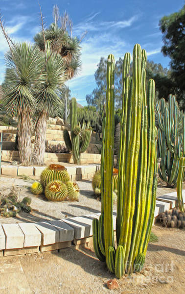 Painting - Cactus Garden - 02 by Gregory Dyer
