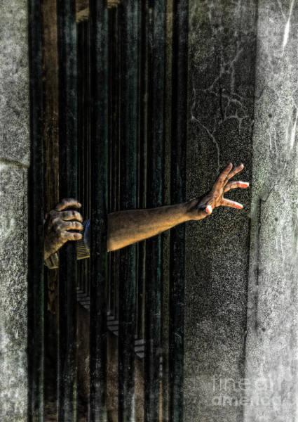 Grimy Wall Art - Photograph - Caged 3 by Jill Battaglia