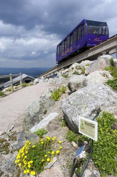 Cinquefoil Photograph - Cairngorm Mountain Railway by Duncan Shaw