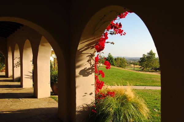 Photograph - California 2 by Jill Reger