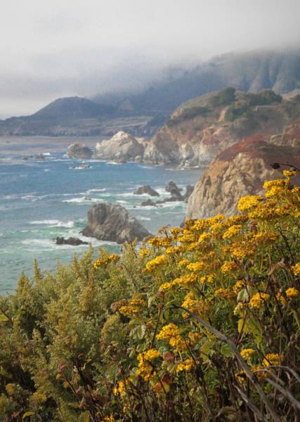 Photograph - California Coast by Diane Bohna