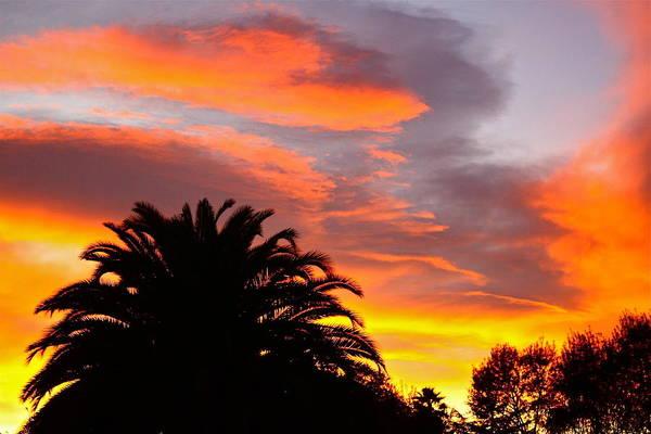 Photograph - California Sunset by Diana Hatcher