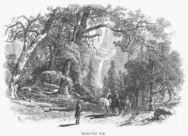 Photograph - California: Yosemite, 1874 by Granger