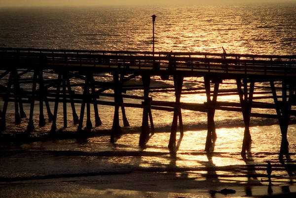 Photograph - Californian Pier by Emanuel Tanjala