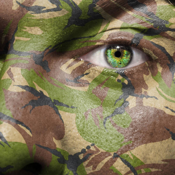 Wall Art - Photograph - Camouflage Warrior by Semmick Photo
