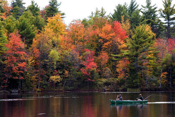 Canoeing In Autumn Art Print