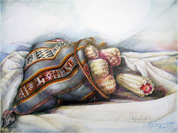 Indian Corn Drawing - Capacho Con Choclo by Sonia Tudela