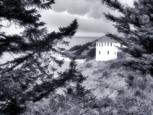 Photograph - Cape Foulweather by Lora Fisher Photography