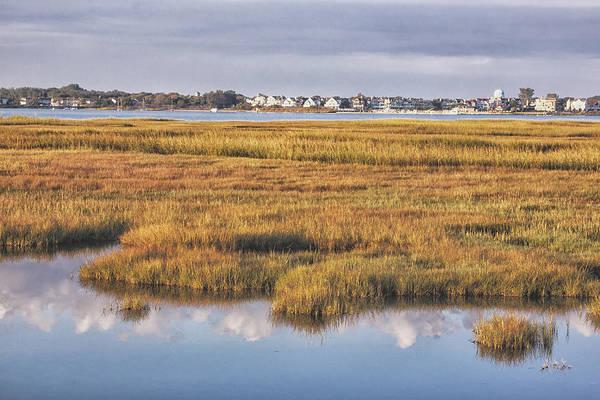 Photograph - Cape May Fall Marsh Grass by Tom Singleton