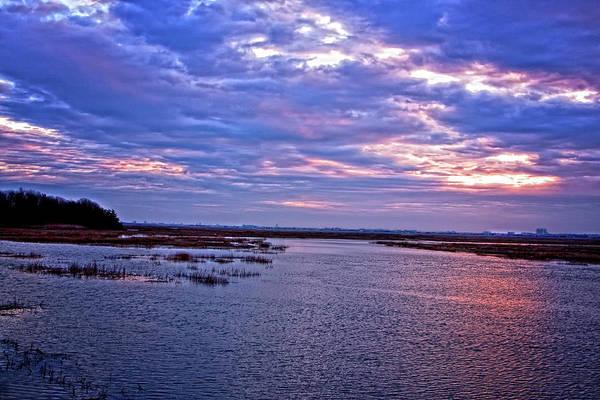 Photograph - Cape May Winter Marsh by Tom Singleton
