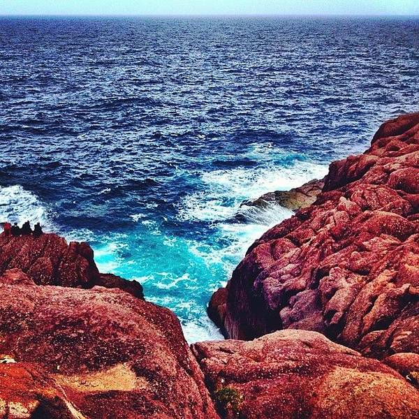 Wall Art - Photograph - Cape Spear by Christopher Campbell