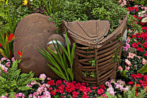 Car Wreck Wall Art - Photograph - Car In The Garden by Garry Gay