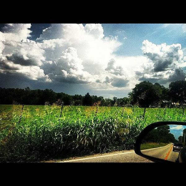 Bright Wall Art - Photograph - Car Rides.  by Lea Ward