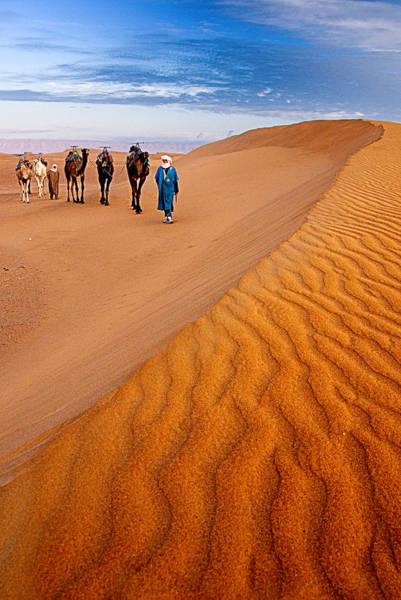 Caravan On The Desert Art Print