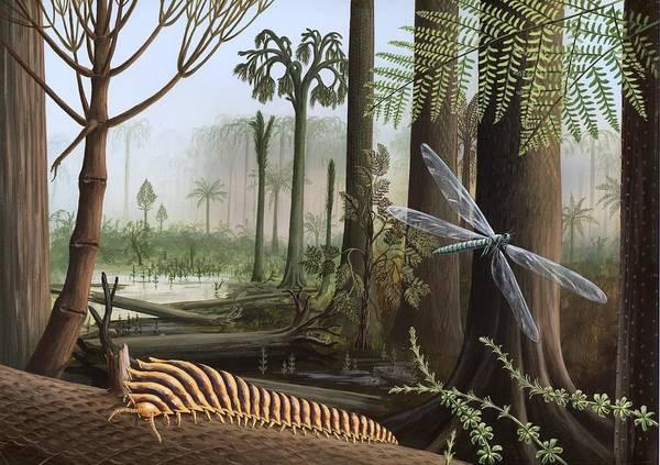 Carboniferous Insects, Artwork Art Print by Richard Bizley