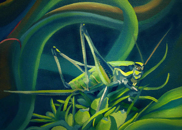 Painting - Card Of Mister Grasshopper by Nancy Griswold