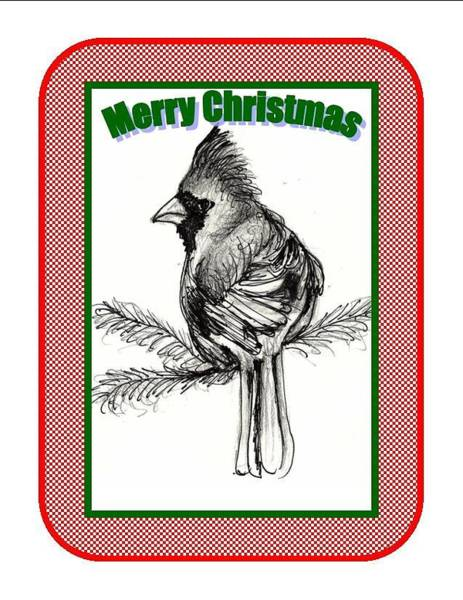 Red Cardinal Drawing - Cardinal Christmas by Carol Allen Anfinsen