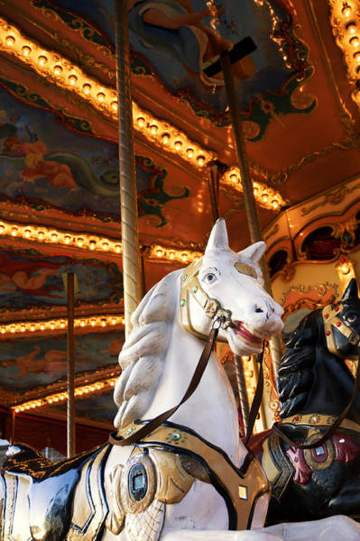 Painted Horses Photograph - Carousel Horse by Fabrizio Troiani