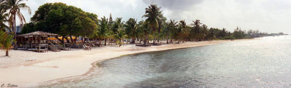 Carribean Shore Art Print