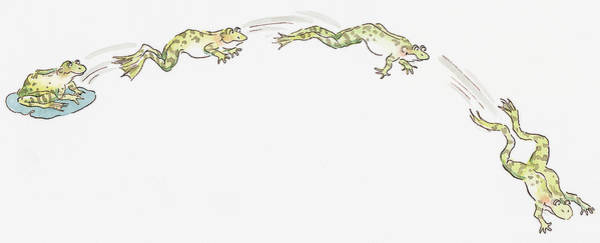 Frog Wall Art - Digital Art - Cartoon Of Frog Sitting On Water Lily And Frogs Jumping by Dorling Kindersley